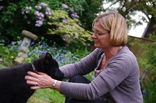Residential Dog Training Suffolk