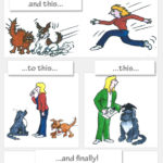 Dog Training Cartoon