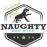 Naughty But Nice Badge